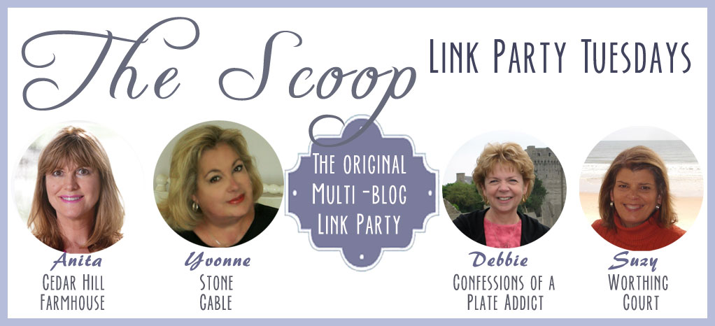 the-scoop-banner-2014-june