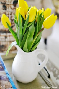 yellow tulips in white pitcher atthepicketfence.com